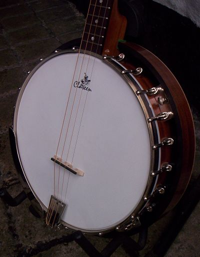 Irish Bouzouki, Loar Mandolin and Recording King Banjo