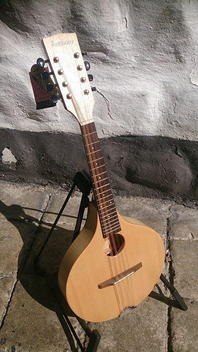 Irish Bouzouki, Loar Mandolin and Recording King Banjo Musical
